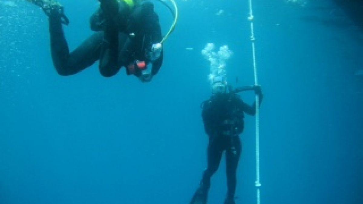 Hochschulsport der RUB – Tauchen im schönsten Unterwassernaturschutzgebiet Europas